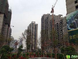 金世纪花园实景图(2014.06.02)
