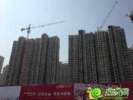 赵都新城 12号地实景图(2014.6.4)