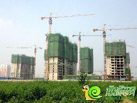 金百合项目东区实景图(2014.6.30)