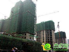 金百合项目东区2#、3#、4#楼实景图(2014.6.30)