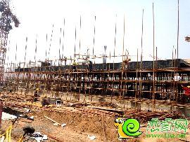 金百合项目西区6#实景图(2014.6.30)