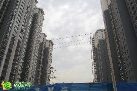锦绣江南实景图(2014.07.25)