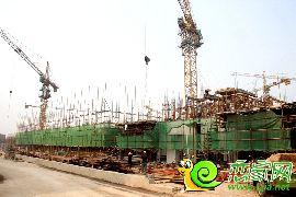 金百合项目西区3#、4#楼实景图(2014.7.7)