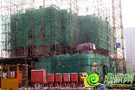 金百合项目西区10#楼实景图(2014.7.7)