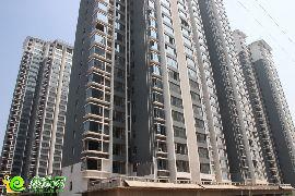 锦绣江南实景图(2014.08.15)