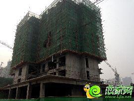 金百合项目西区10#楼实景图(2014.8.6