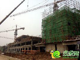 金百合项目西区实景图(2014.8.6)