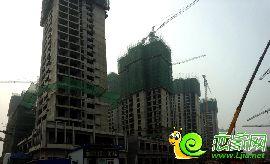 金百合项目东区1#、2#、3#、4#楼实景图(2014.8.6