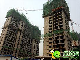 金百合项目东区5#、6#楼实景图(2014.8.6