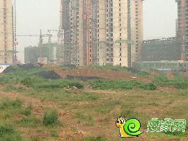 盛瑞华庭西区实景图(2014.8.19)