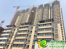 百家新城先锋苑实景图(2014.8.22)