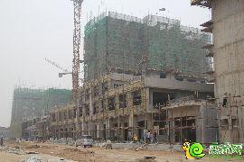 金百合项目西区实景图(2014.9.2)