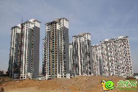 锦绣江南实景图(2014.10.13)