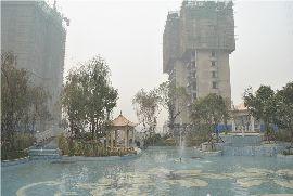金百合园林实景图(2014.10.09)