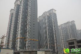锦绣江南实景图(2014.11.26)