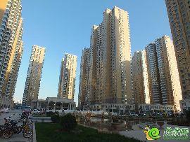汉成华都实景图(2014.11.05)