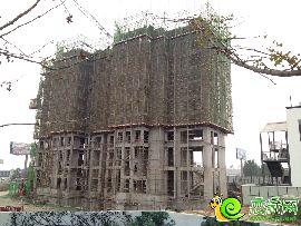 项目6#楼实景图(2014.11.8)