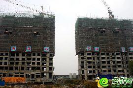 江南锦苑项目7#、9#楼实景图(2014.11.24)