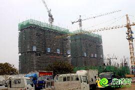 江南锦苑项目11#、13#楼实景图(2014.11.24)