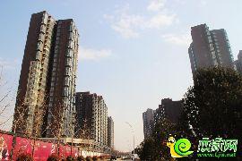 华信山水文苑实景图(2014.12.29)