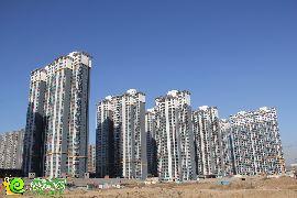 锦绣江南实景图(2014.12.17)
