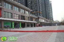 锦绣江南实景图(2015.01.06)