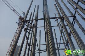 承重柱钢筋(2015.01.07)