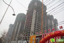 卓冠美景城实景(2015.01.26)
