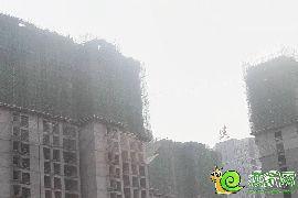 赵都新城17号地实景图(2015.4.9)