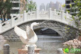 汉成华都园林实景图(2015.05.19)