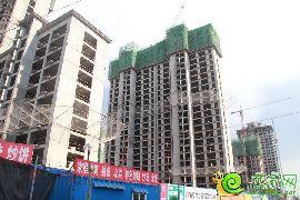赵都新城17号地实景图(2015.5.12)