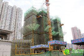 东城尚品1号楼实景图(2015.06.03