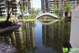 汉成华都园林实景图(2015.06.12)