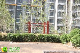 锦绣江南实景(2015.06.26)