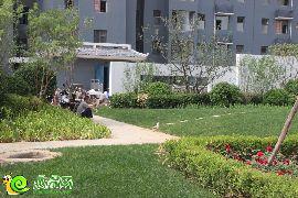 锦绣江南一期园林实景(2015.07.03)