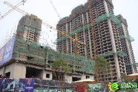 铂尔缦国际公馆实景图(2015.07.04)