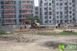 盛瑞华庭西区实景图(2015.7.4)