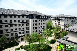 阳光东尚·香樟园实景图赏析