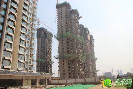 锦绣江南二期新建楼座已封顶(2015.08.27)