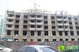 盛瑞华庭东区实景图(2015.9.15)