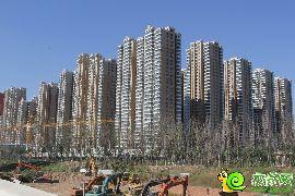 汉成华都实景图(2015.10.10)