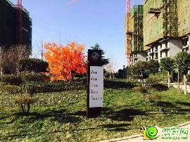 北湖十六峯工地实景图(2015.12.3)