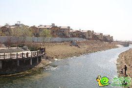 紫岸沿河实景