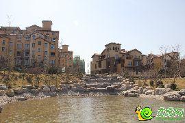 沿河看紫岸别墅
