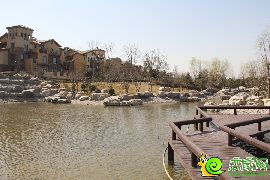 紫岸园区内水系实景