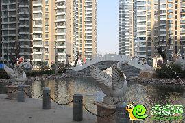 汉成华都实景图(2016.02.26)