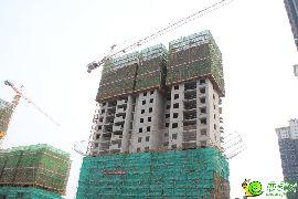 锦绣江南实景图(2016.3.8)