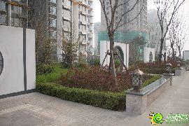 锦绣江南实景图(2016.3.19)