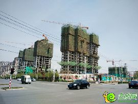 赵都新城S12地实景图(2016.4.9)