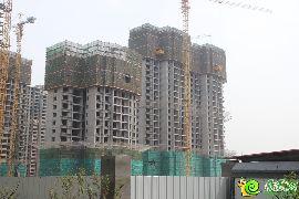 锦绣江南实景图(2016.4.17)